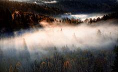 Misty morning sunrise in Nuuksio National Park.