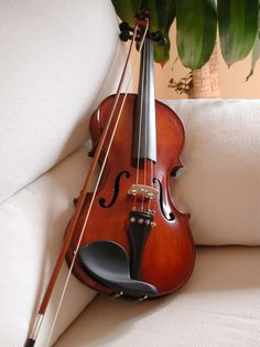 There's no way that this is the violin that enslaved Sam's heart in M.L. Weaver's The Lightness of Dust. #violin #book