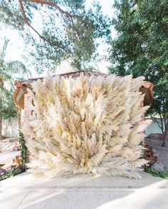 Wedding decor is the atmosphere of your holiday. Wedding dried flowers decor will give the wedding a special aesthetics, beauty and naturalness. Wedding Table Centerpieces, Flower Centerpieces, Flower Decorations, Flower Arrangements, Wedding Decorations, Decor Wedding, Feather Wedding Decor, Diy Wedding Flowers, Boho Wedding