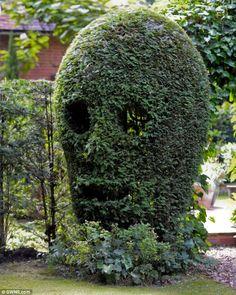 Neurologist Trimmed a Bush Skull Garden Decoration!