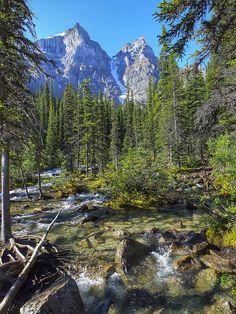 Mountain stream (Banff, Alberta) by Gustavo Thomas