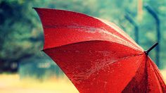 Red Umbrella Wallpaper Stock Photos 182