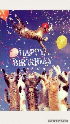 first birthday photoshoot Happy Birthday Quotes, Happy Birthday Images, Birthday Messages, Birthday Pictures, Happy Birthday Wishes, Birthday Greetings, Birthday Cards, Bisous Gif, Birthday Blessings