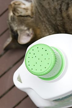 Plastic laundry detergent bottle as a watering can. Drill plenty of holes in the cap. To allow air to flow into the bottle and keep the water free flowing, cut a hole near the cap in the handle – not to close to the cap, otherwise the water spills out there, too. Great way to recycle!