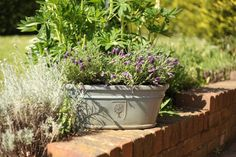 The RHS Garden Trough by Apta is available with an antique grey, sky blue, white and charcoal glaze finish Garden Troughs, Garden Pots, Grey Gardens, Garden Supplies, Container Gardening, Glaze, Garden Design, Charcoal, Planter Pots