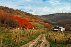 in the tien shan - Google Search