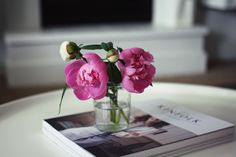 Peonies (photo by a merry mishap)