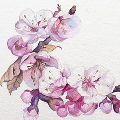 Tu recepcja - Watercolors by Katerina Pytina