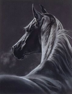 """""""Moonlight"""" equine art by Kim McElroy"""
