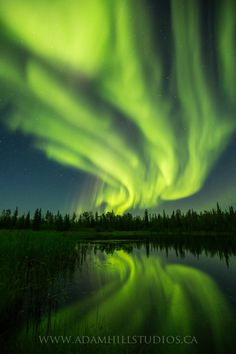 Auroral Explosion by Adam  Hill on 500px. Is this ReAL life? I want to SEE iT someDaY!!
