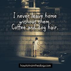 I Never Leave Home Without Them. Coffee and Dog Hair