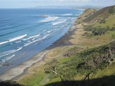MATAKANA AREA BEACH - PAKIRI BEACH - View from the Mangawhai Cliffs track south along Mangawhai Beach; Pakiri Beach and Cape Rodney are visible further away