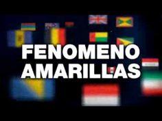 ▶ Video AmarillasInternet