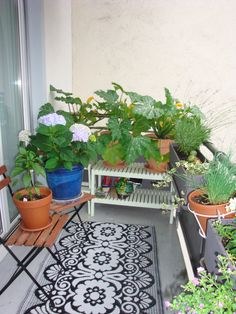 my own back balcony - a mixture of useful and pretty...the flooring gives me an idea.