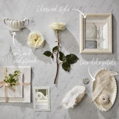 Rose breeders dedicated to creating the finest wedding and event roses, distinguished by their beautiful flower forms and fragrance. Rose Wedding, Wedding Flowers, David Austin, Queen, Creamy White, Patience, Wedding Events, Beautiful Flowers, Fragrance