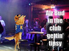 Air Bud in the club gettin' tipsy