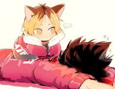 sleeping kuroo, neko!kenma, uniforms, http://www.pixiv.net/member_illust.php?mode=manga&illust_id=45123607