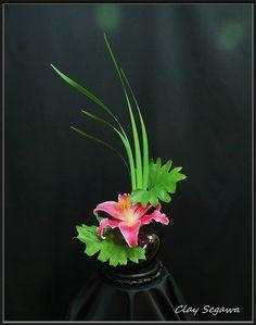 Ikebana by Clayton Segawa Ikebana Flower Arrangement, Ikebana Arrangements, Floral Arrangements, Japanese Plants, Japanese Flowers, Flower Centerpieces, Flower Vases, Japanese Floral Design, Arreglos Ikebana