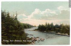 Roseway River, Shelburne NS