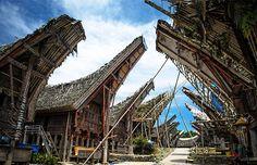 Liburan fantastis ke Tana Toraja - Makassar selama 3 Hari 2 Malam. Yuk, segera ikutan tournya di Travelicious, hanya Rp.1.500.000 #panoramagroup
