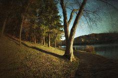 November At Burrell Lake in Lower Burrell, Pennsylvania