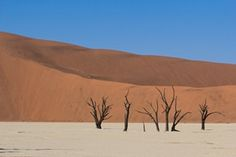 When touring with Chameleon Safaris, you can experience the wonder of Sossusvlei. Add extra value to your trip by Packing for a Purpose and supporting the Naankuse-run Epikiro Life Line Clinic that provides free and accessible primary healthcare to the San Bushman community, located in the far east of Namibia.