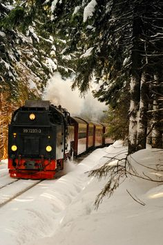 a train in winter sparknotes