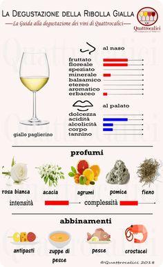Impariamo a degustare i vini Ribolla gialla su Quattrocalici. Wine Bar Restaurant, Wine Vine, Wine Education, Wine Subscription, Wine Cocktails, Cheap Wine, In Vino Veritas, Wine Cheese, Italian Wine