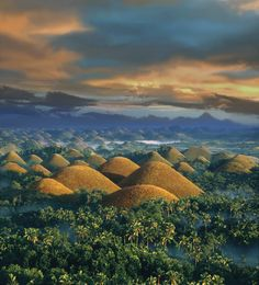 The Chocolate Hills are a famous tourist attraction of Bohol Philippines. They are in the Philippine Tourism Authority's list of tourist destinations in the Philippines. They have been declared the country's third National Geological Monument and [. Regions Of The Philippines, Voyage Philippines, Bohol Philippines, Philippines Travel, Palawan, Places To Travel, Places To See, Places Around The World, Around The Worlds