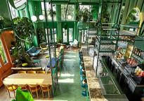 Vibras tropicales llegan a Ámsterdam, dentro de este original bar que es como un santuario natural.