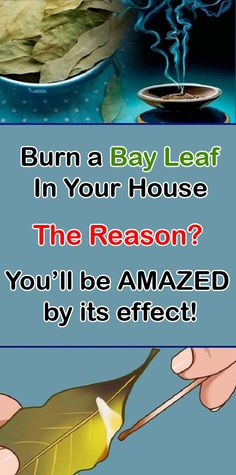 Bay leaf burning is a real bay leaf magic. Burning a bay leaf benefits your entire wellbeing. Learn how. Health And Wellbeing, Health And Nutrition, Natural Supplements For Anxiety, Pulp Recipe, Spa Weekend, Motor Skills Activities, Cough Remedies, Bay Leaves, Natural Home Remedies