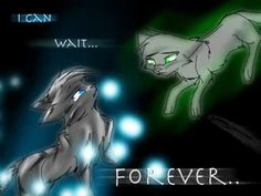 Pics For > Warrior Cats Jayfeather And Halfmoon