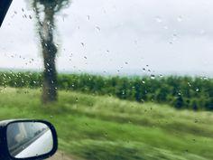 Rain day ☔️