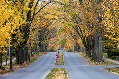 Luzerne Street in Johnstown by Bryan Smith  ---  This looks like a part of St. Louis where I live now!!!