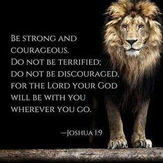 Fear not...