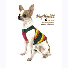 Red Green Yellow Spring Dog harnesses leash by myknitt #dog #bostonterrier #etsy #crochet #diy #pet #cute #myknitt #puppy