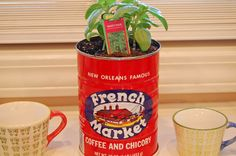 Ingredient Spotlight: Fresh Herbs