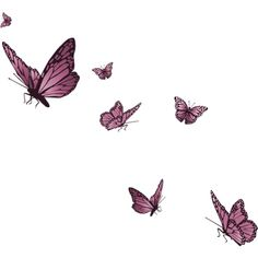 Butterflies ❤ liked on Polyvore featuring butterflies, fillers, backgrounds, animals, decoration, effects, doodles, borders, picture frame and scribble