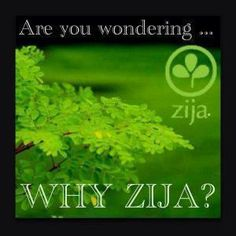 "Are you wondering, ""Why Zija?""  Get the facts here: http://kendralabouf.myzija.com/moringa/index.html"