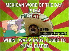 Mexican WOTD: Puma