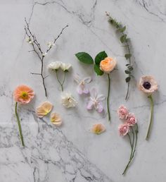 Learn how to make the perfect DIY Spring Floral arrangement on the blog!