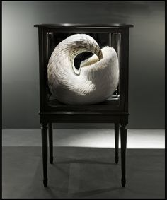 Quell, 2011, Kate MccGwire