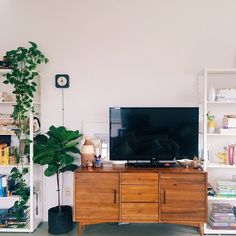 Renter's Guide to Decorating | west elm