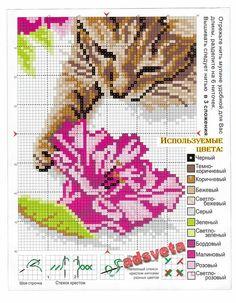 Cat cross stitch  irisha-ira 1/2