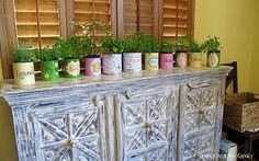 Indoor herb plants can be very charming as decorations inside of home that applicable by using pots as planters in how to have your own herb garden inside of home Easy Garden, Herb Garden, Best Bathroom Flooring, Formula Cans, Indoor Planters, Indoor Herbs, Herbs Indoors, Growing Herbs, Green Garden