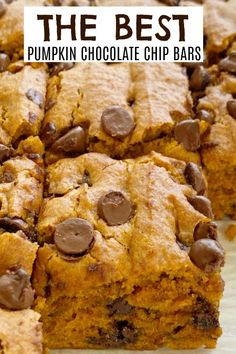Pumpkin Chocolate Chip Bars | Pumpkin Bars | Pumpkin Recipes | Pumpkin chocolate chip bars are super soft-baked, cake-like, moist and loaded with milk chocolate chips. This recipe uses an entire can of pumpkin so there will no wondering what to do with the leftovers. #pumpkinspice #pumpkinrecipes #pumpkinbars #dessertrecipe #fallbaking #recipeoftheday Pumpkin Cake Recipes, Baked Pumpkin, Pumpkin Bars, Pumpkin Dessert, Pumpkin Spice, Chocolate Chip Bars, Pumpkin Chocolate Chips, Chocolate Chip Recipes, Brownie Recipes