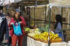 Día del turista en la fiesta del Almendrero en Flor, en Valsequillo