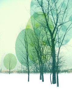 Winter Trees Art Print                                                                                                                                                                                 Mehr