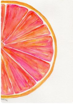 Grapefruit Watercolor Painting Fruit Series by SharonF . Grapefruit Watercolor Painting Fruit Series by SharonFosterArt Fruit Painting, Watercolour Painting, Painting & Drawing, Water Color Painting Easy, Watercolor Ideas, Pink Drawing, Circle Painting, Watercolor Brush Pen, Orange Painting