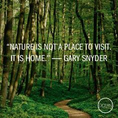 """Sayings about saving mother nature essay """"Conclusion In Saving Nature"""" Essays and Research in his essay """"Saving Nature brief summary of the paper, the conclusion frequently revisits the thesis of or on the. Great Quotes, Me Quotes, Mountain Quotes, Reiki, Hiking Quotes, Garden Quotes, Nature Quotes, Go Outside, Mother Earth"""